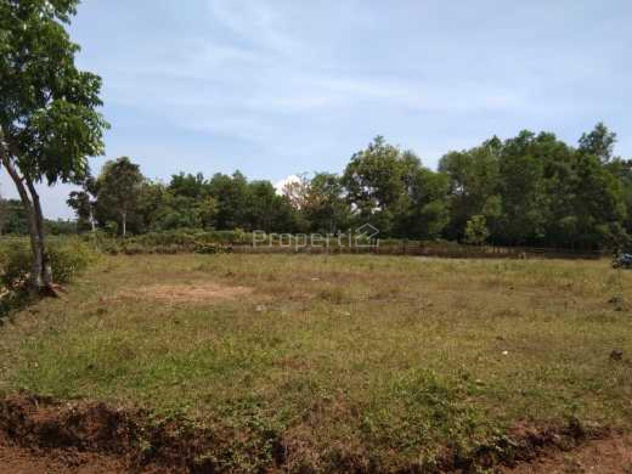 Lahan untuk Perumahan Hanya 2 Km dari Stasiun Daru, Jambe