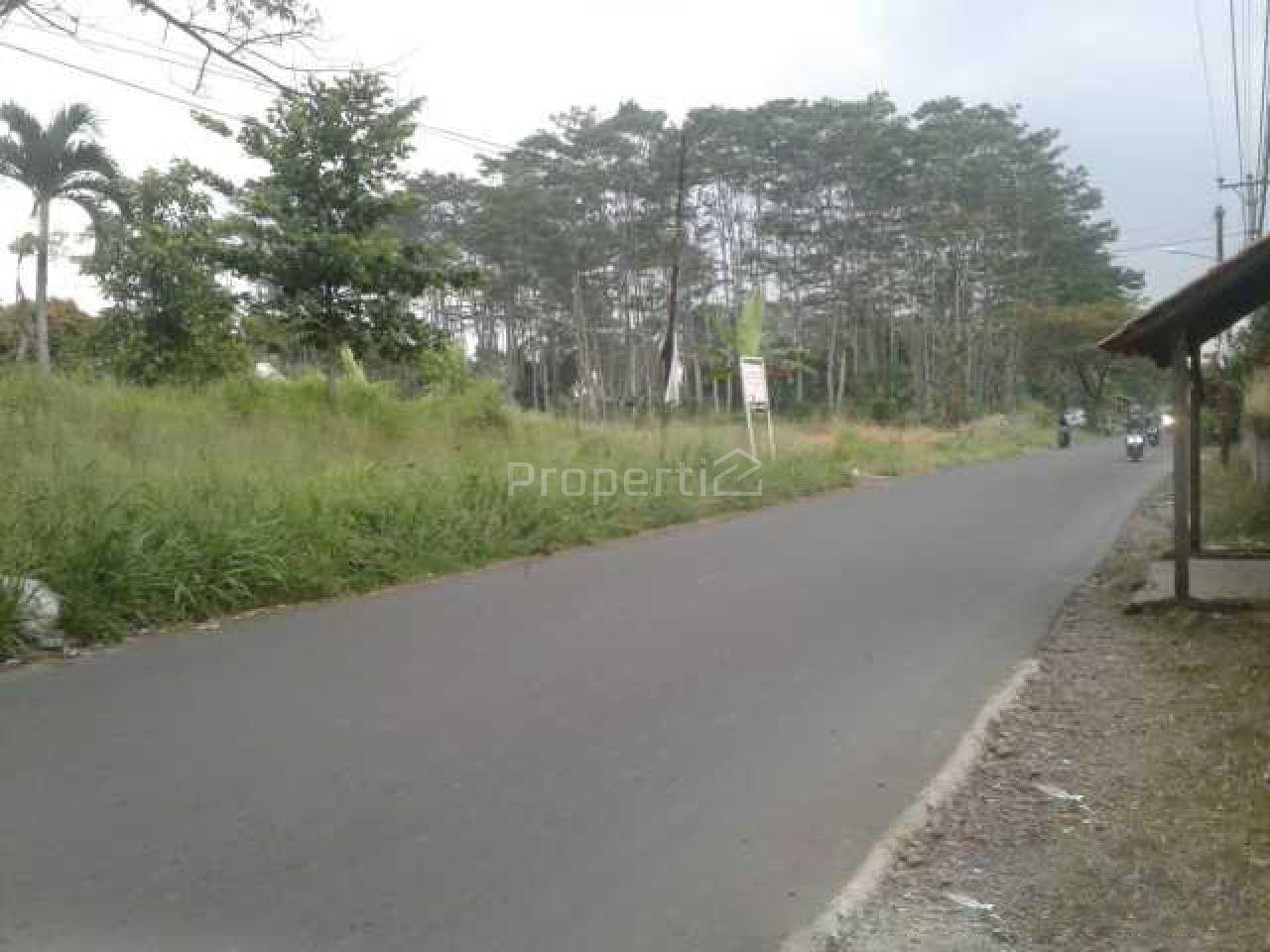 Lahan 25 Ha Peruntukan Perumahan di Bogor, Kab. Bogor