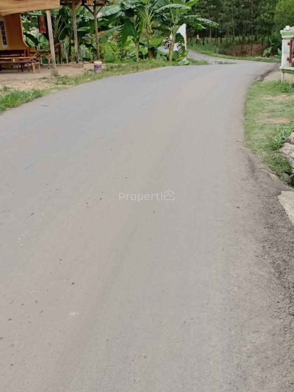 Tanah Hamparan Sangat Cocok untuk Perumahan, Villa atau Resort, Kab. Bogor