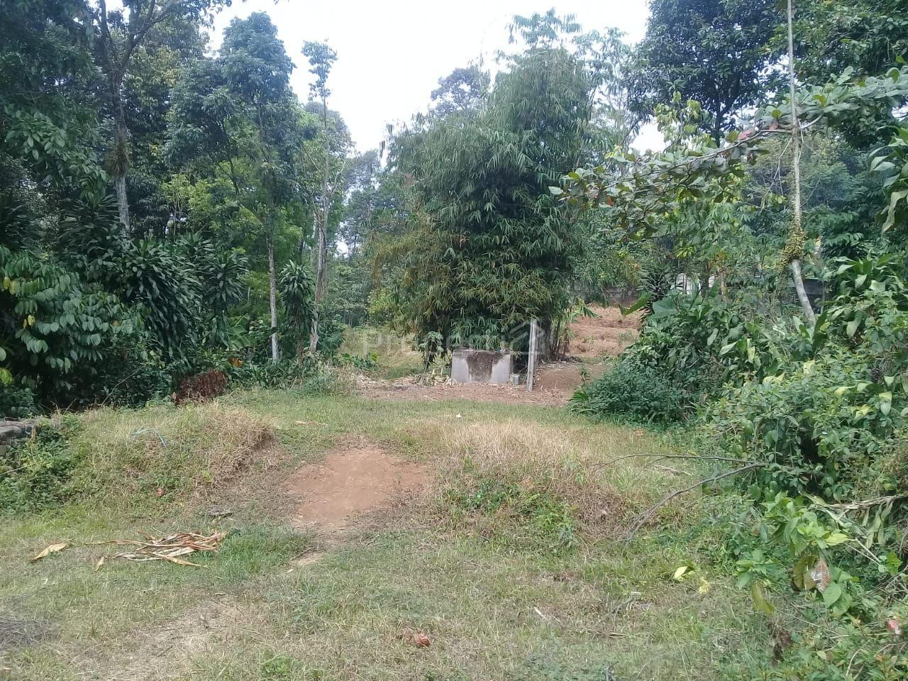Land 5.5 Ha Allocation of Housing in Sukajadi, Bogor, Jawa Barat