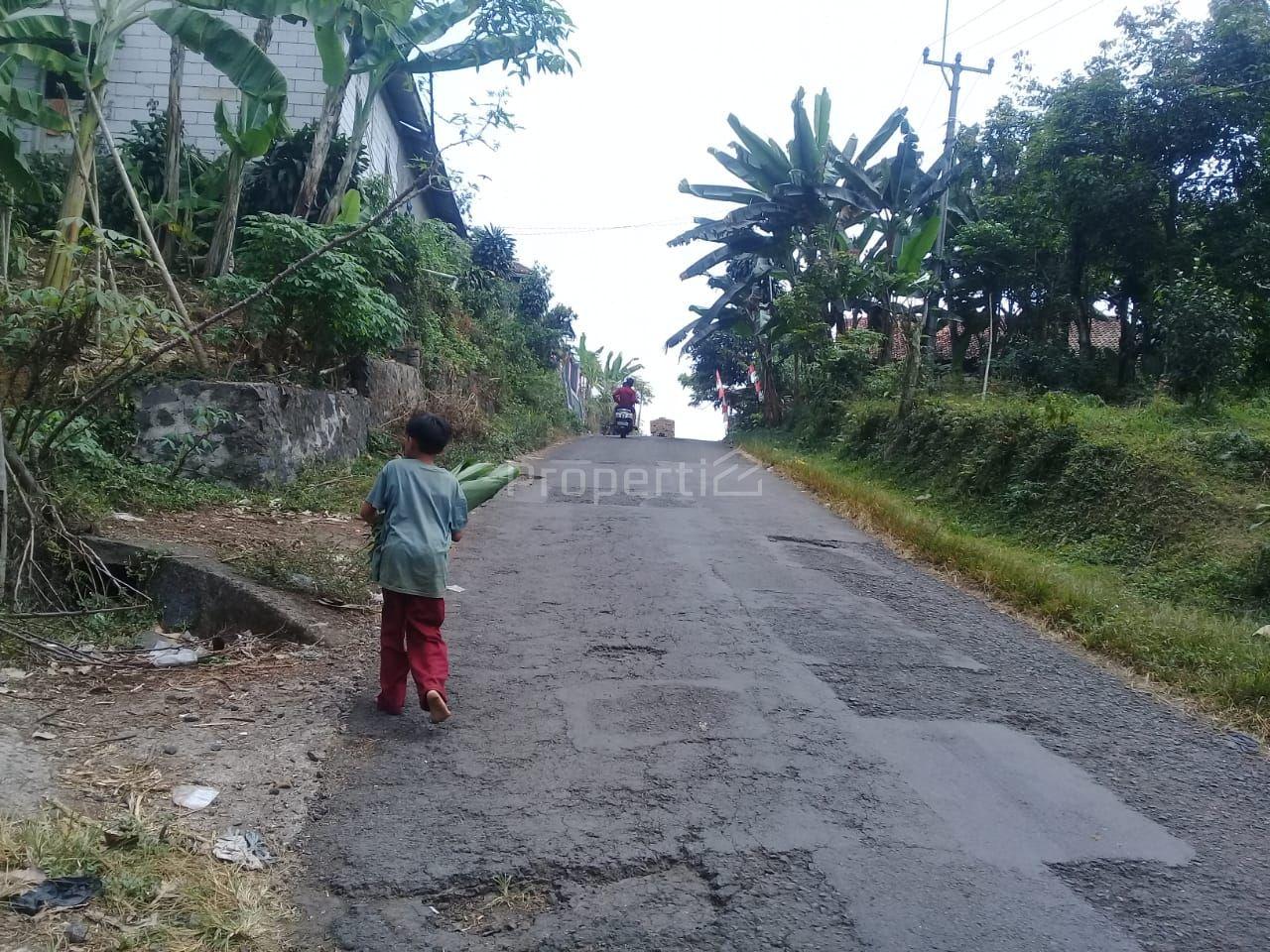 Land 5.5 Ha Allocation of Housing in Sukajadi, Bogor, Tamansari