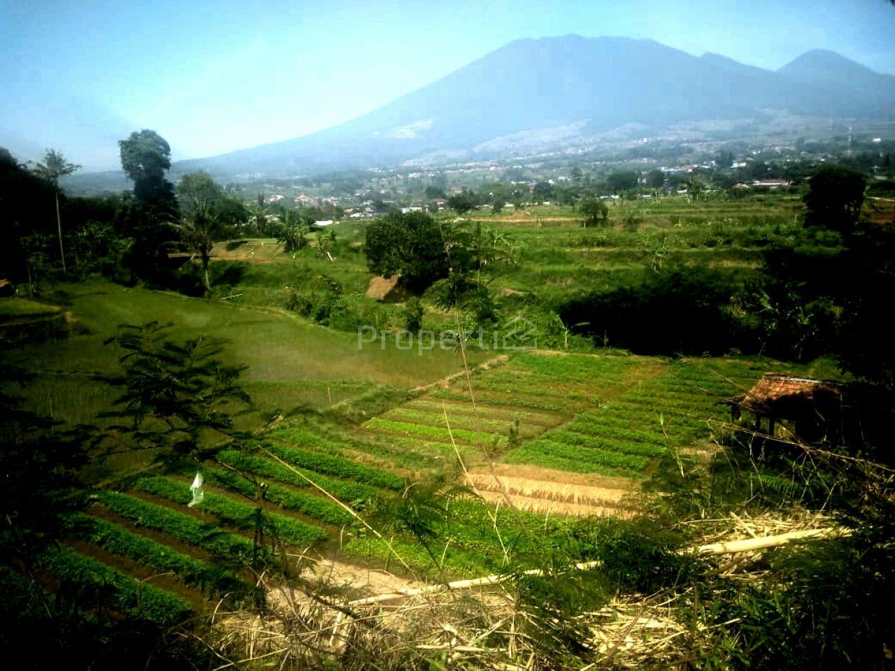 Lahan Investasi 30 Ha di Cianjur, Jawa Barat