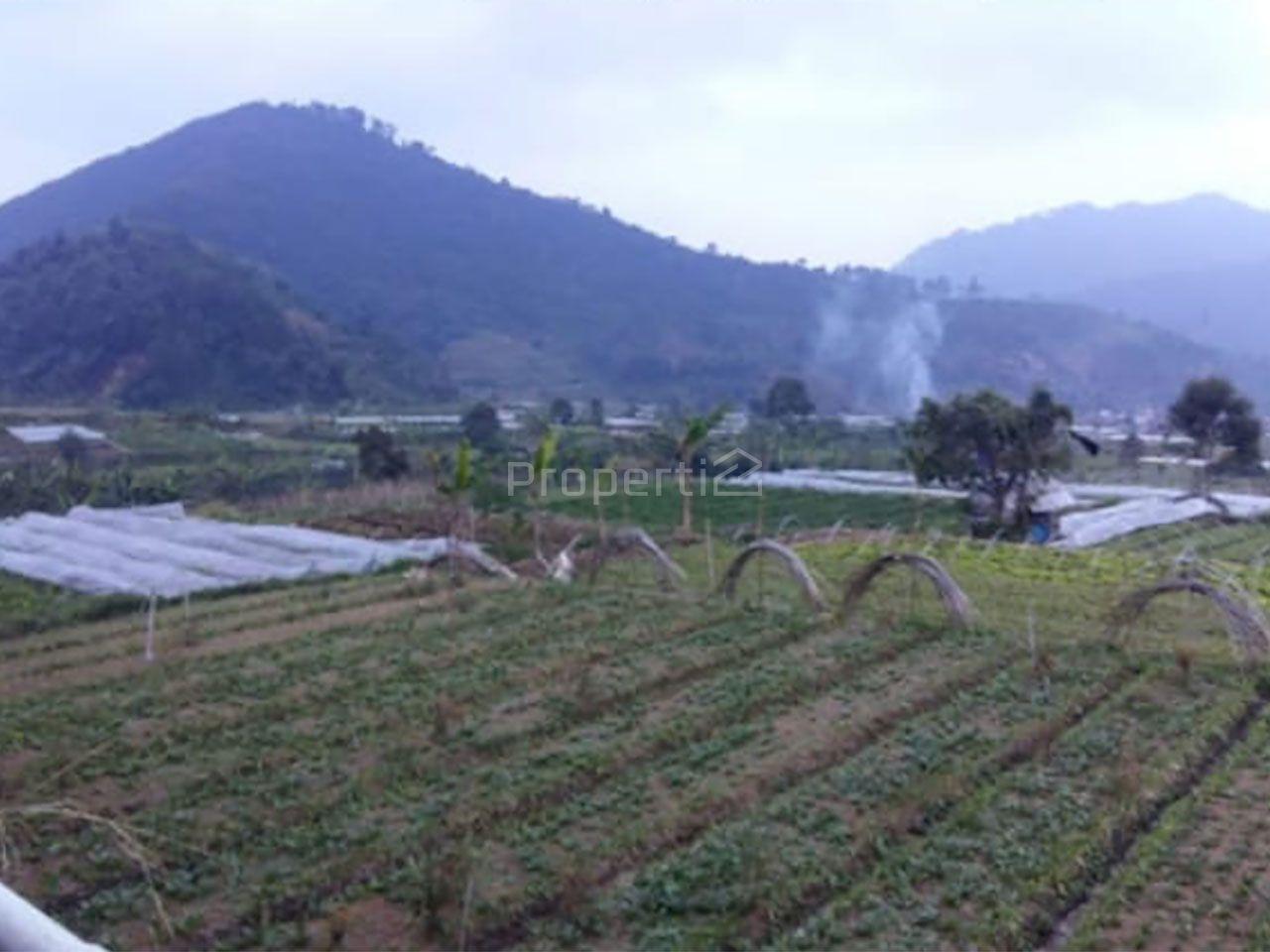 Lahan Komersial Pinggir Jalan di Bogor, Jawa Barat