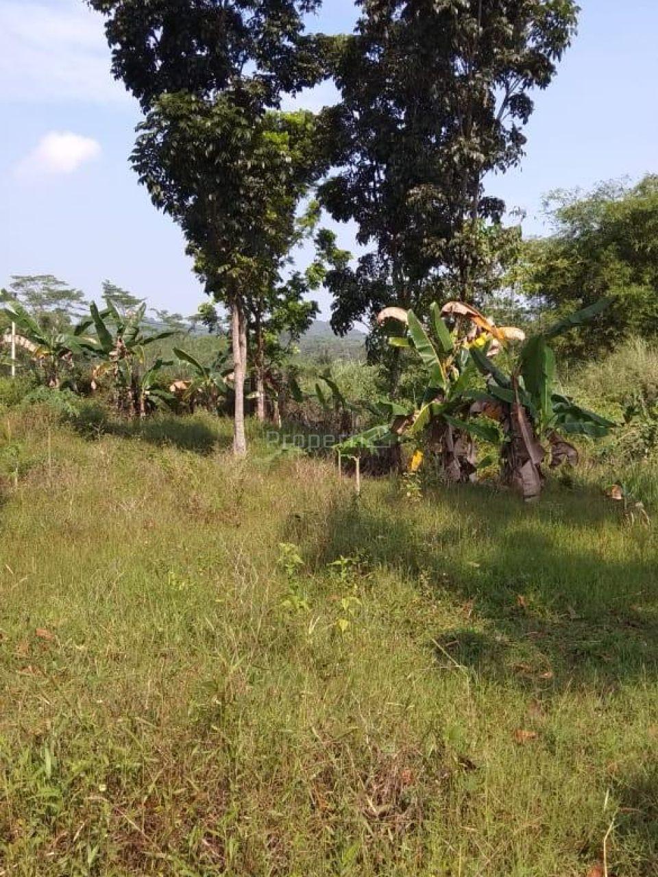 Lahan Perumahan di Cikahuripan, Bogor, Jawa Barat
