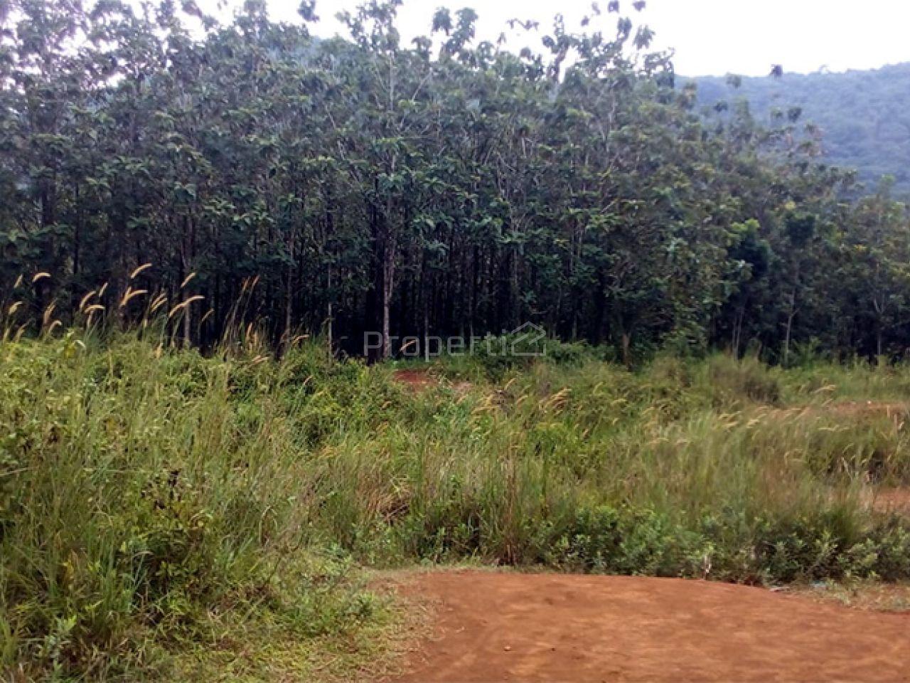 Take Over Lahan Perumahan 35 Ha di Sekitar Bogor, Jawa Barat