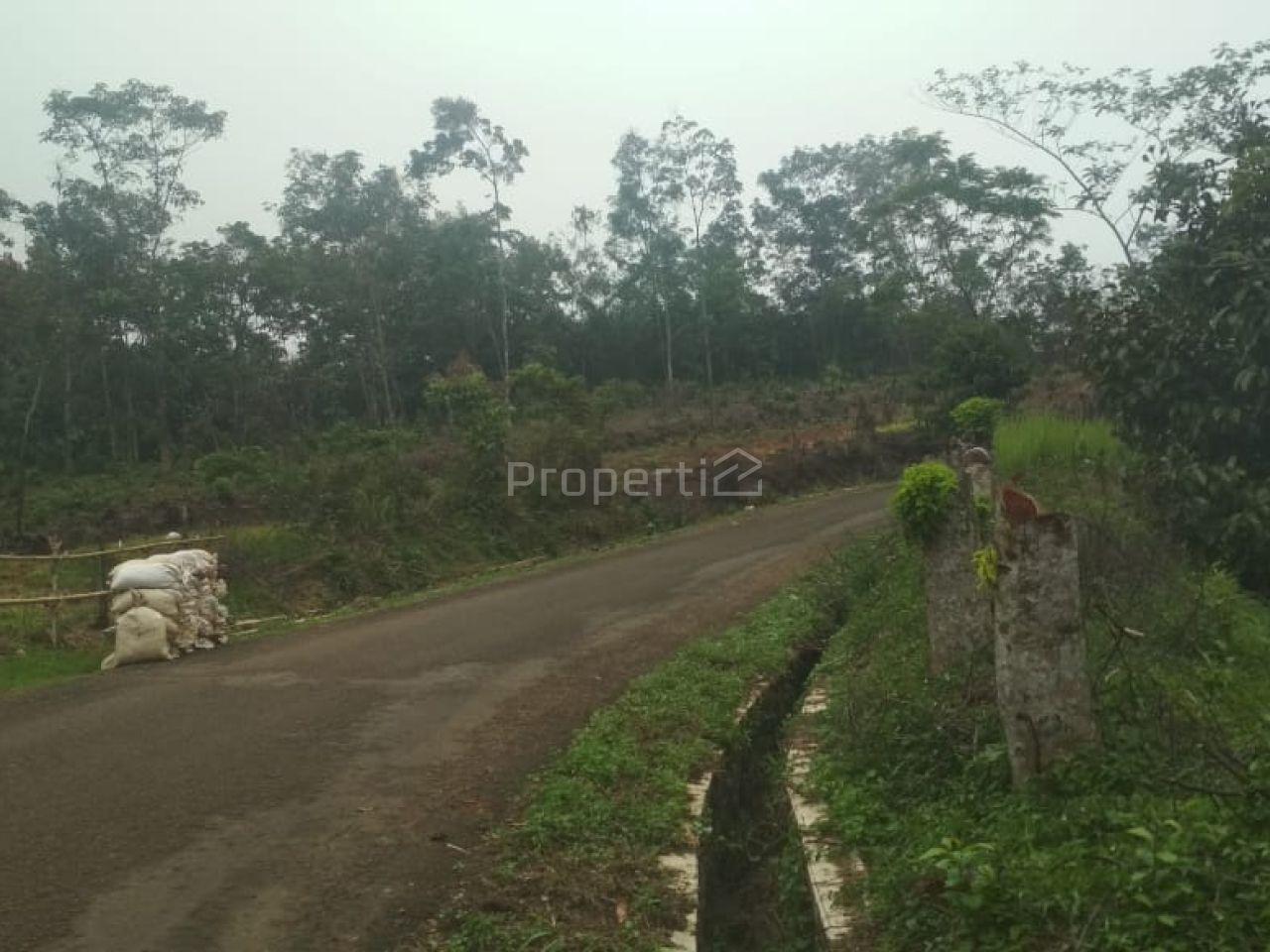 Lahan Peruntukan Perumahan di Cigudeg, Bogor, Jawa Barat