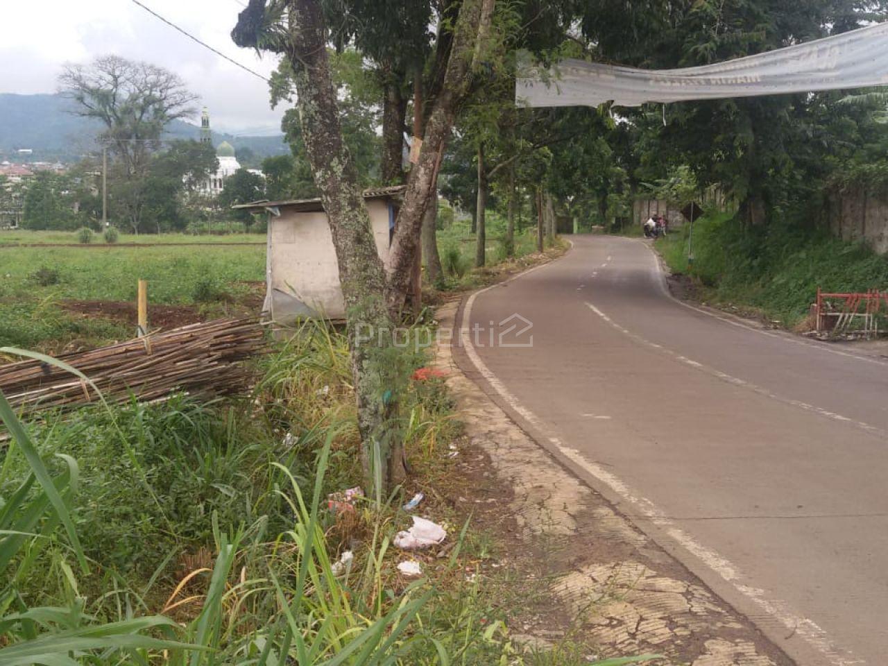 Lahan Peruntukan Perumahan di Sukaresmi Cianjur, Kab. Cianjur
