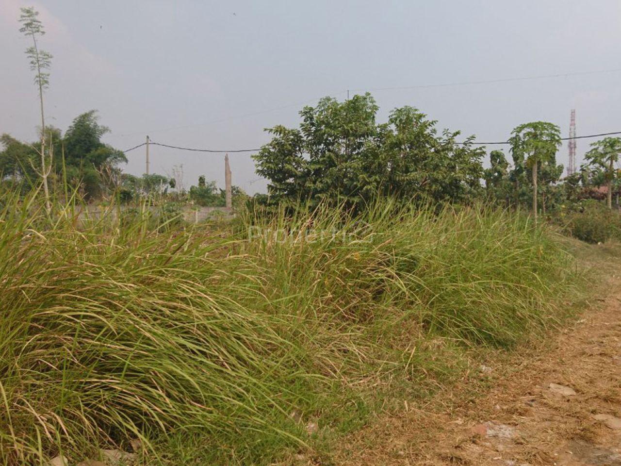 Tanah Datar Cocok untuk Cluster, Banten