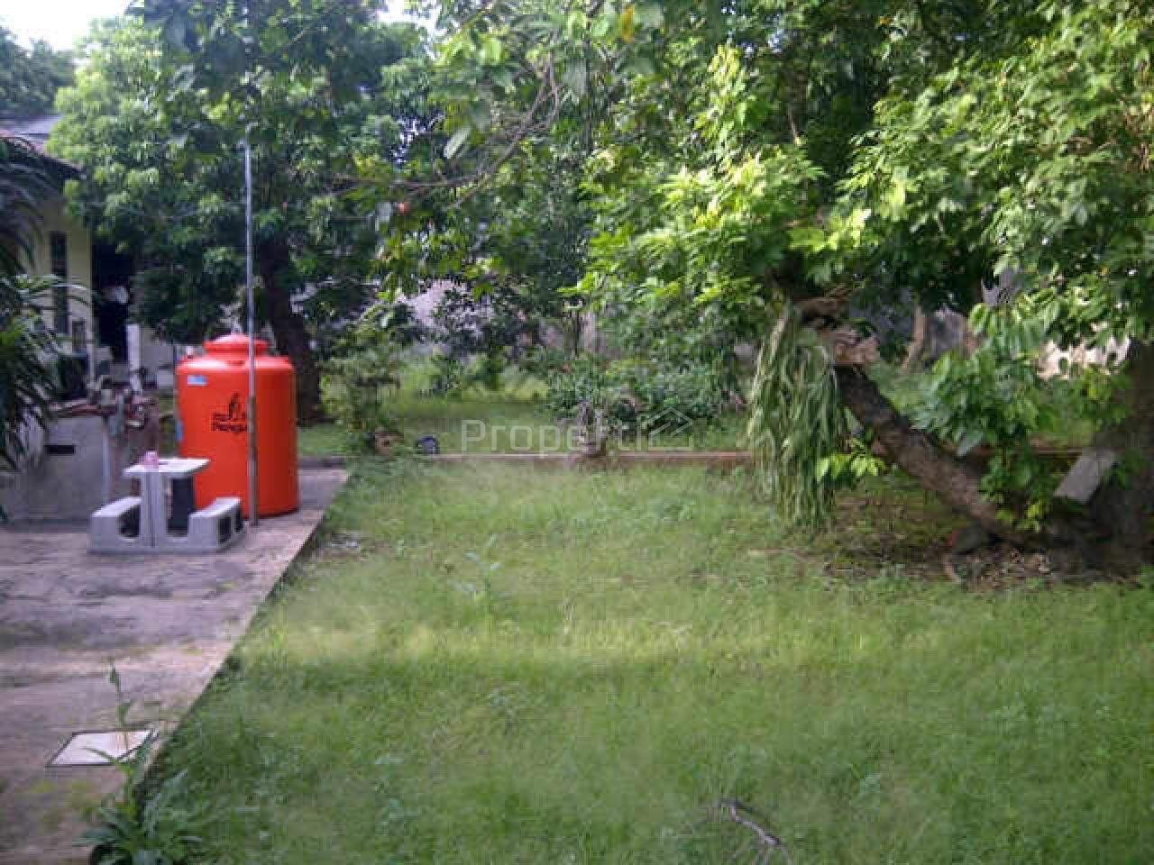 Natural and Spacious House in Kramatjati, Jakarta Timur