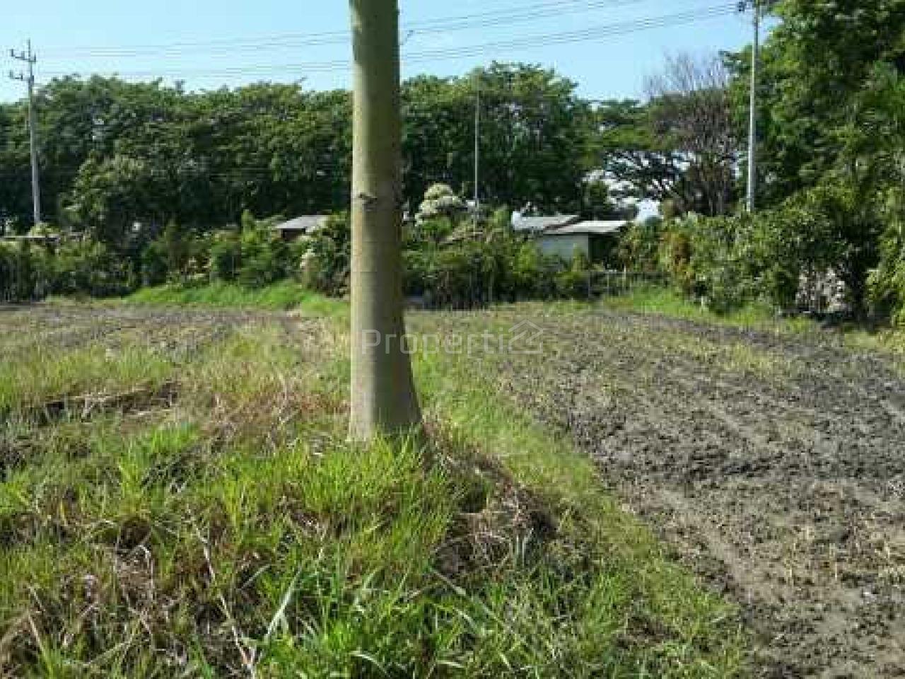 Land 4 Ha on Side of Highway in Sidoarjo, Gedangan