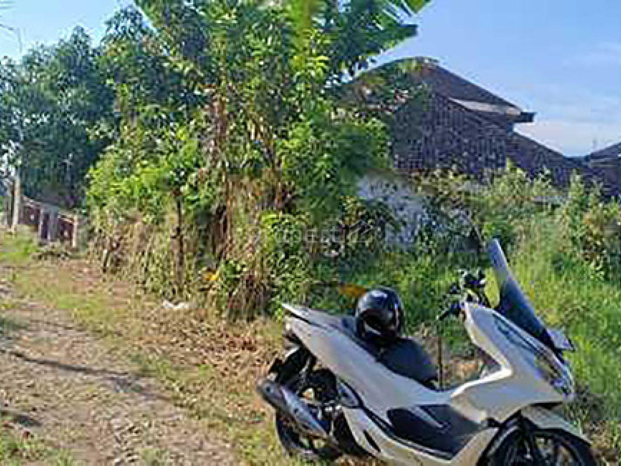 Tanah Murah di Pandanrejo, Kota Batu, Jawa Timur