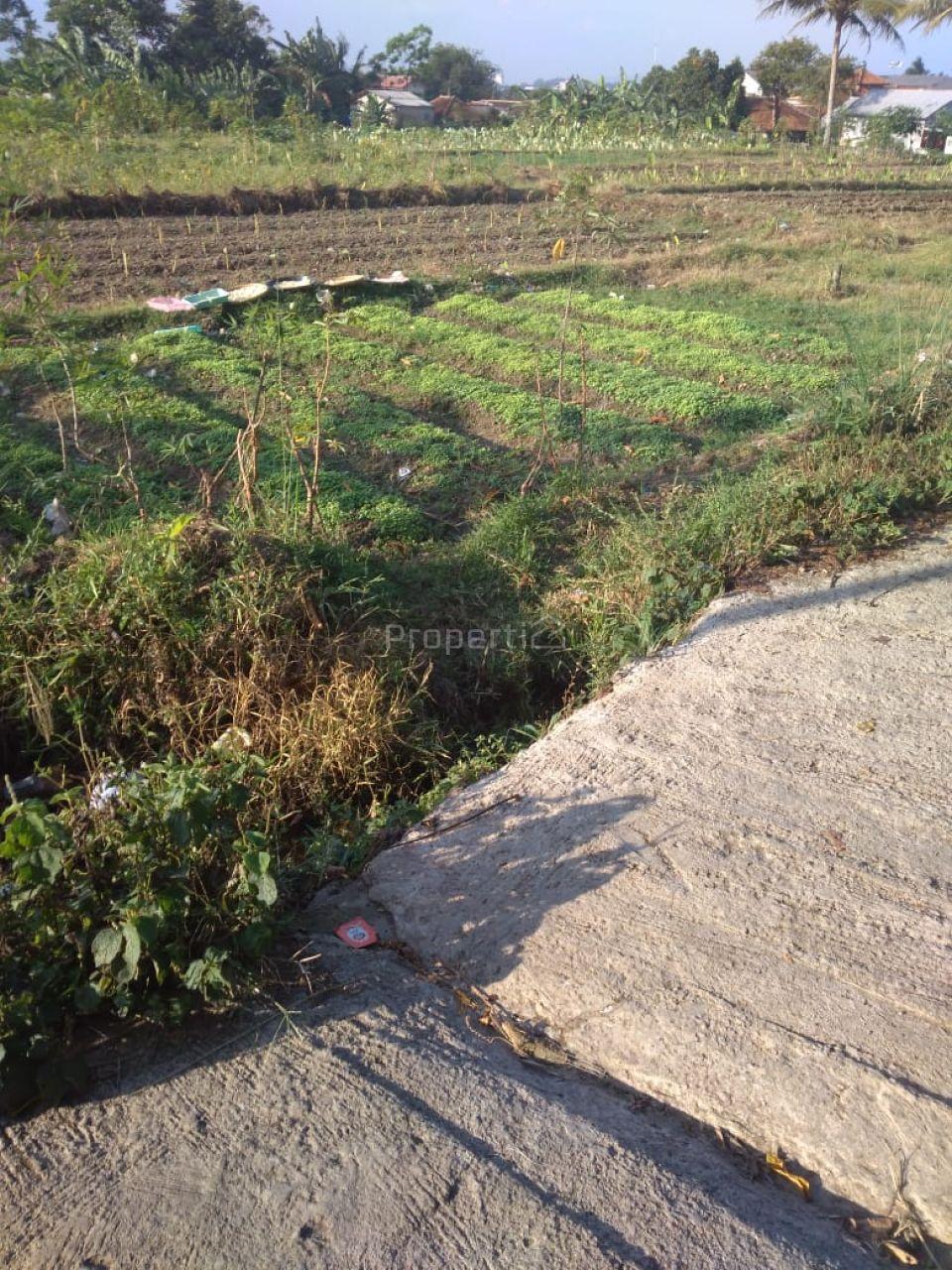 Land 40 Ha for Housing in Cibungbulang, Jawa Barat