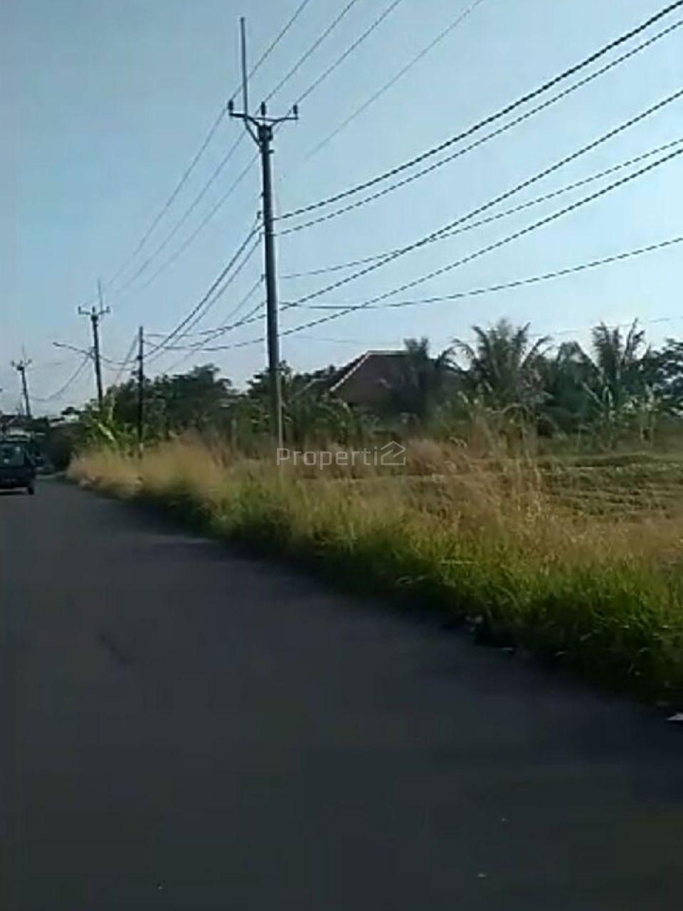 Lahan 7 Ha Peruntukan Perumahan di Ciampea Bogor, Jawa Barat