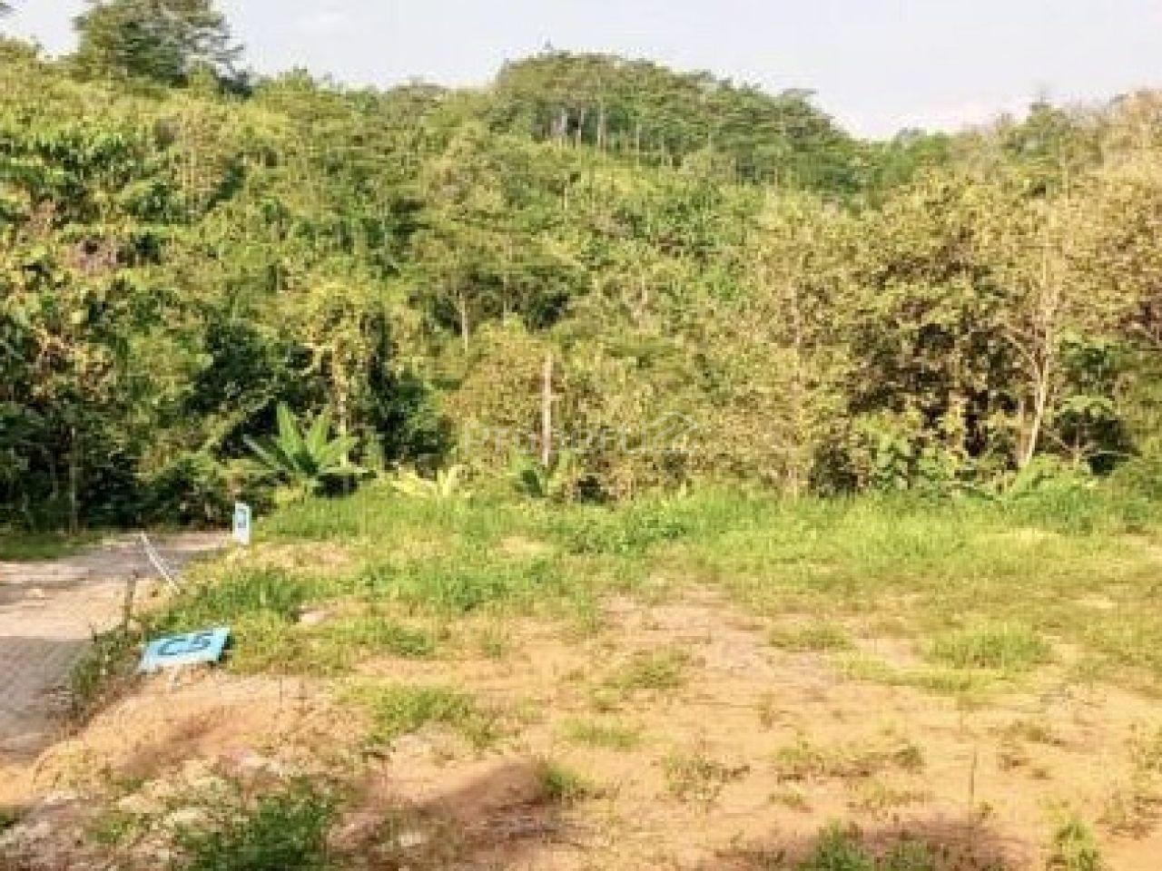 Plot Land in Sadeng, Gunungpati, Semarang, Jawa Tengah