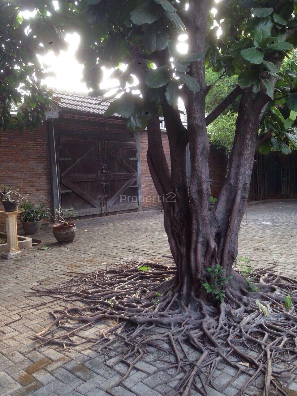 Tanah Kavling Emas Posisi Hook di Kedoya Selatan, DKI Jakarta