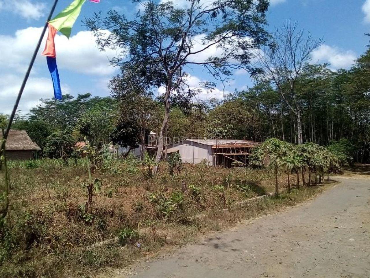 Tanah Kavling Siap Bangun di Tlogowaru, Jawa Timur