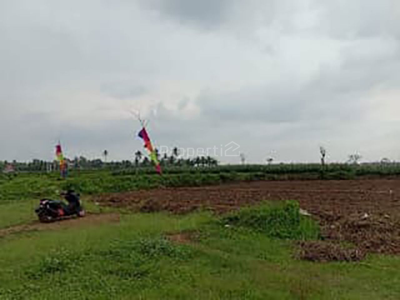 Strategic Plot Land in Saptorenggo, Pakis, Jawa Timur