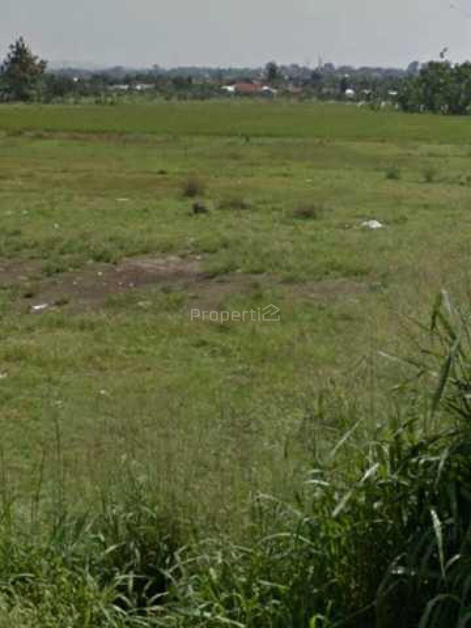 Tanah Lapang dan Datar di Ciomas, Bogor, Jawa Barat