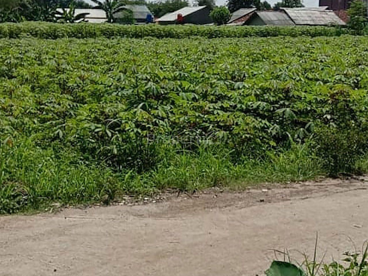Tanah Perumahan di Karadenan, Cibinong, Kab. Bogor