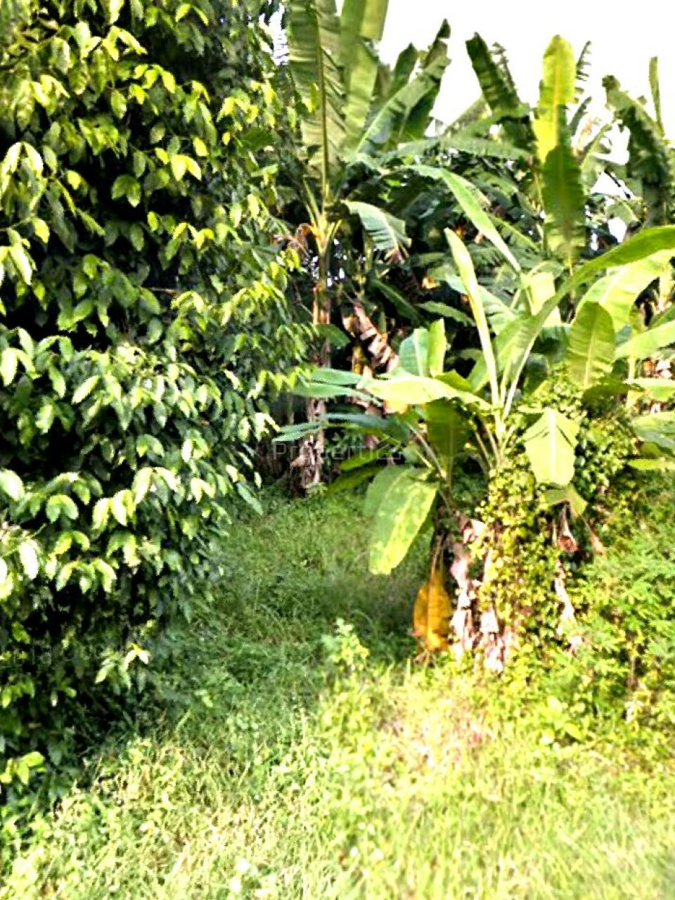 Lahan Peruntukan Perumahan di Beji, Kota Depok, Jawa Barat