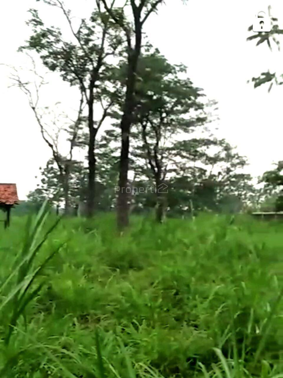 Lahan Investasi di Cibungbulang, Jawa Barat