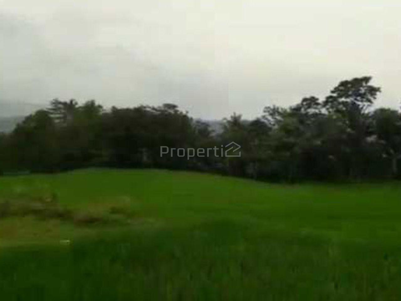 Lahan Investasi di Cigudeg, Jawa Barat