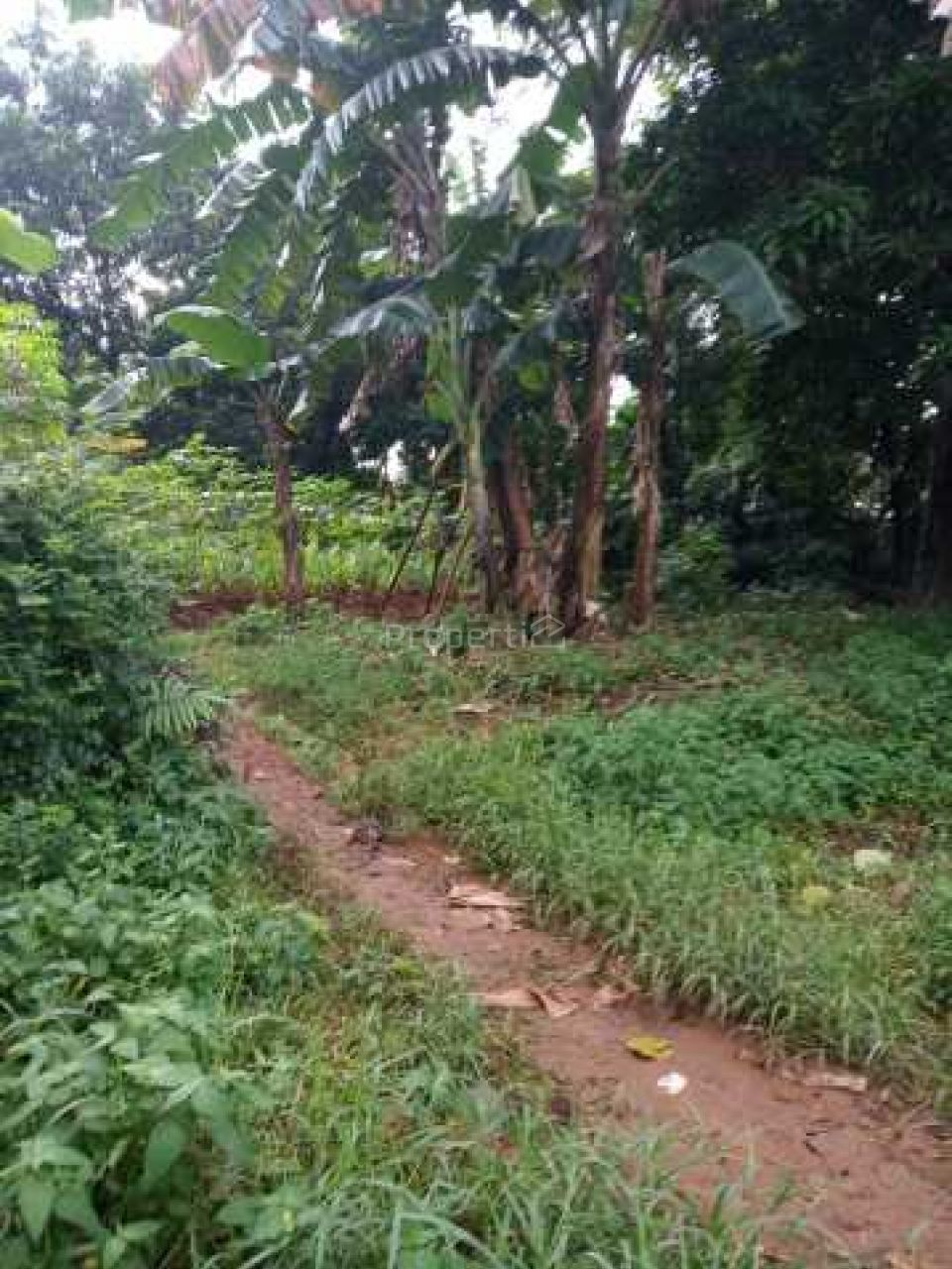 Tanah Datar Siap Garap di Cikeas , Jawa Barat