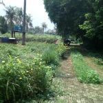 Land for Housing Allocation in Depok City