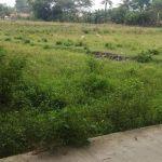 Lahan 1,7 Ha Peruntukan Perumahan di Cibitung, Bekasi