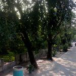 Lahan Perumahan 2,2 Ha di Suka Pura, Jakarta Utara
