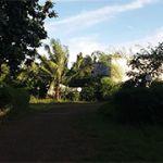 Strategic Commercial Land in Lebak Bulus