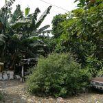 Residential Land at Kemanggisan