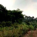 Land for Housing in Bojongsari, Depok City