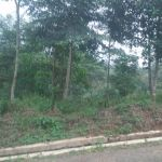 Land Allocation Housing in Cigudeg, Bogor