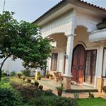 Large and Natural House with Front and Rear Gardens in Cinere