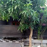 Simple Complex House in Depok