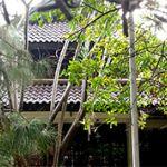 Rumah 2 Lantai di Menteng, Jakarta Pusat