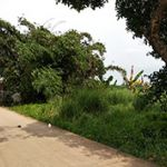 Tanah 2 Ha di Sekitar Area Perumahan di Kota Bekasi