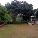 Land and Buildings in Pondok Pinang