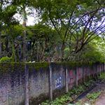 A 4.5 Ha Land in East Jakarta