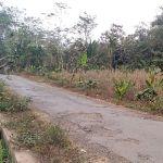 Tanah Kavling Depan Perkantoran Terpadu Kota Malang