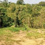 Plot Land in Sadeng, Gunungpati, Semarang