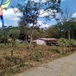Tanah Kavling Siap Bangun di Tlogowaru