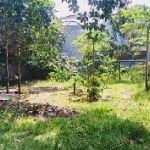 Tanah 1275 M2 Dekat Area Pusat Bisnis Jakarta