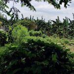 Tanah Perumahan di Pemukiman Pondok Kopi, Jakarta Timur