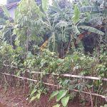 Tanah Siap Bangun di Beji, Kota Depok