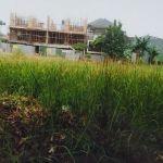 Tanah Strategis dalam Permukiman di Joglo