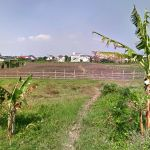 Strategic Land Next to Kanjuruhan University Malang