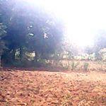 Excellent Land 8,000 m2 for Housing in Depok City