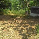 Tanah 5,6 Ha untuk Perumahan di Cileungsi
